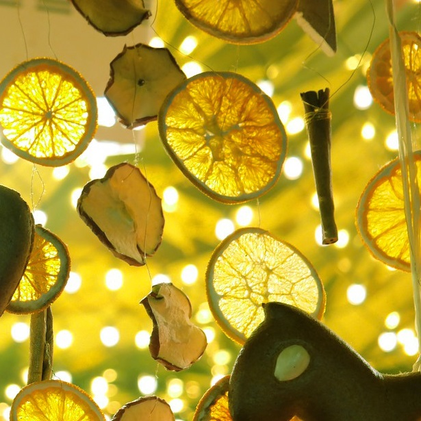 color palette_4_lemons